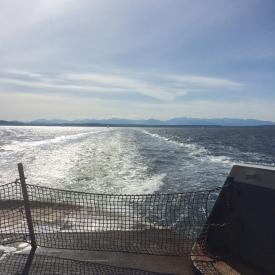 ferryboatwake